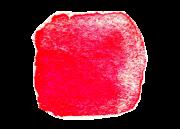 Erdbeerquadrate